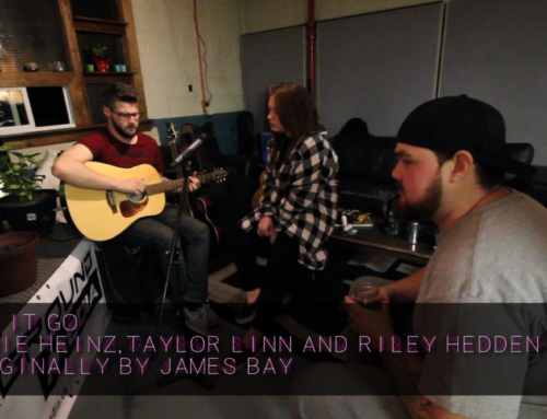 Let it Go (cover) – Jamie Heins, Taylor Linn, Riley Hedden